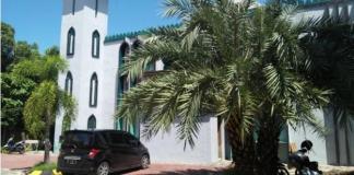 pohon kurma, masjid as said, makassar