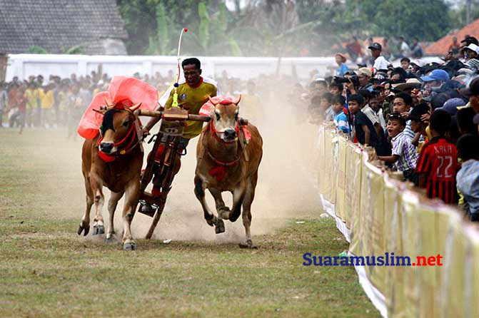 Budaya Jawa Timur Ini Harus Dikenal