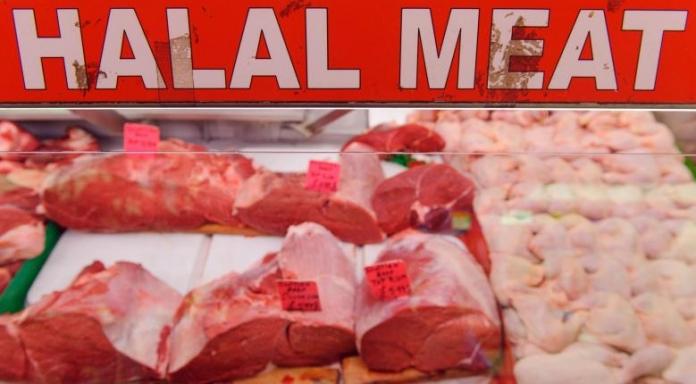Rencana Pemerintah Merevisi Permendag 'Kewajiban Halal' Impor Hewan Diapresiasi Halal Institute