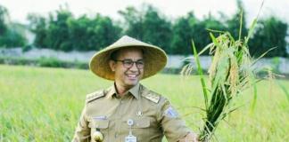 Anies Baswedan Panen Padi Di Cakung Jakarta Prioritaskan Pasokan Beras Lokal