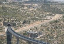 Palestina Bangsa Terjajah Yang Ingin Bebas