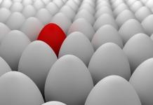14 Sikap dalam Menyikapi Suatu Perbedaan (Khilafiyah)
