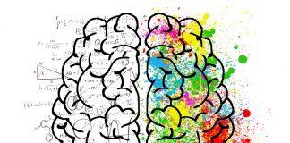 Belajar Matematika Tingkatkan Fungsi Otak dan Atasi Pikun