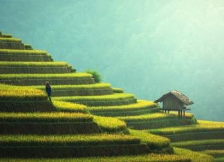 Hubungan Sosial antara Pribumi, Keturunan Arab dan Keturunan Tionghoa di Indonesia