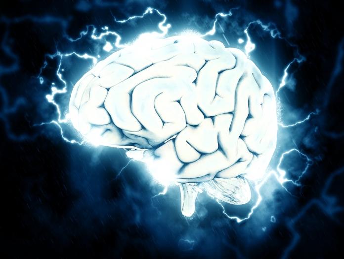 Inilah Karakteristik Otak Wanita dan Pria