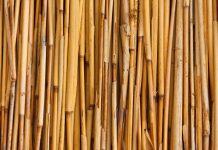 Bambu Runcing, Senjata Tradisional Namun Berkekuatan Supranatural