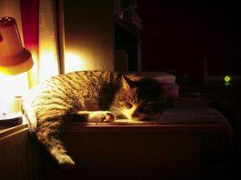 Doa Menjelang Tidur