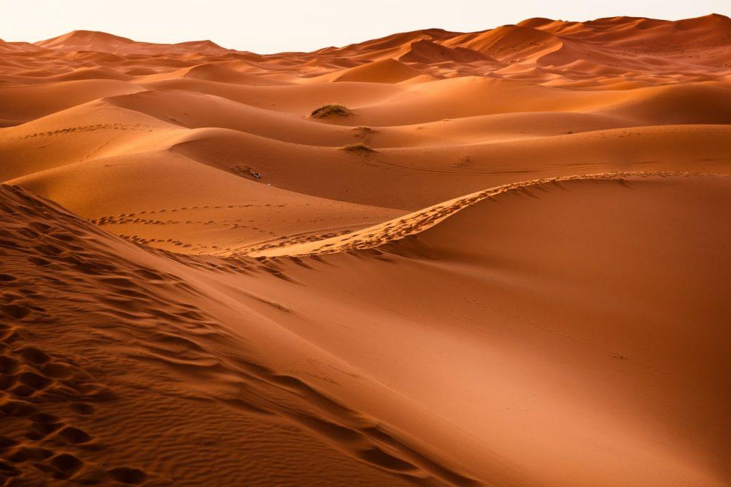 Ilustrasi padang pasir