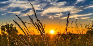 QS An Naziat Ayat 40: Jiwa Yang Kuat