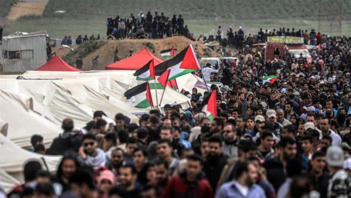Ini Alasan Arab Saudi Berikan 1000 Paket Haji Gratis Kepada Keluarga Syuhada Palestina