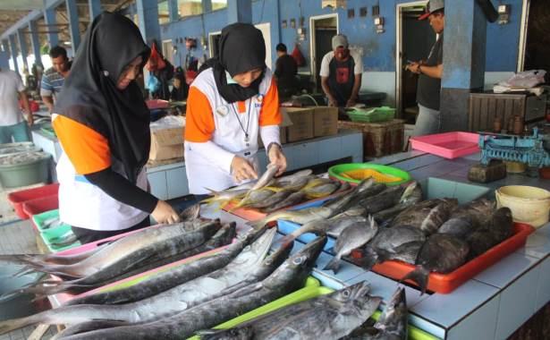 Belanja Ikan Segar, Harga Murah di Depo Pasar Ikan Sidoarjo