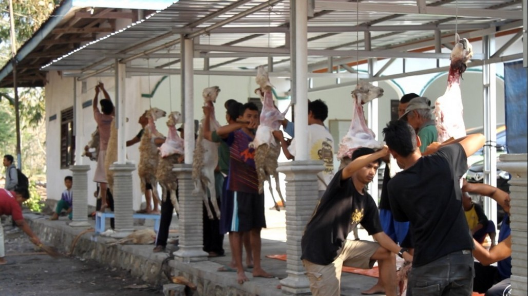 Global Qurban ACT menyapa korban kekeringan
